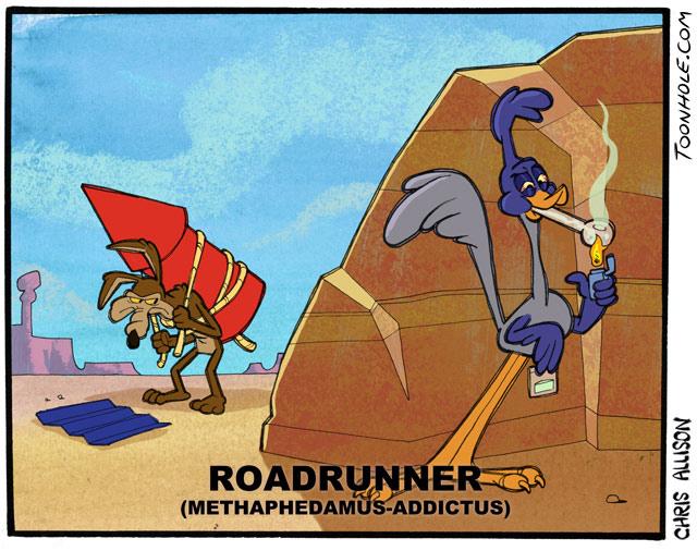 Roadrunner Habit